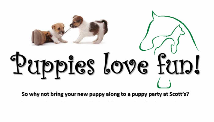 free puppy parties