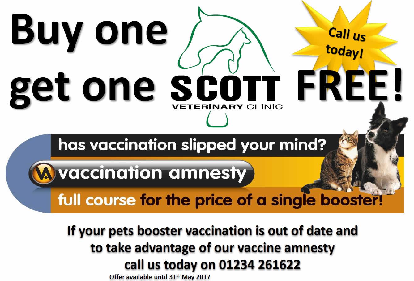 vaccination amnesty at Scott Vets