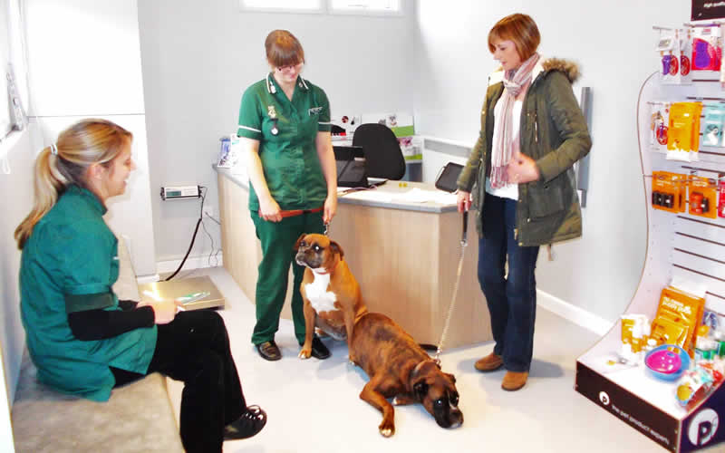 dog and client at Scott vets