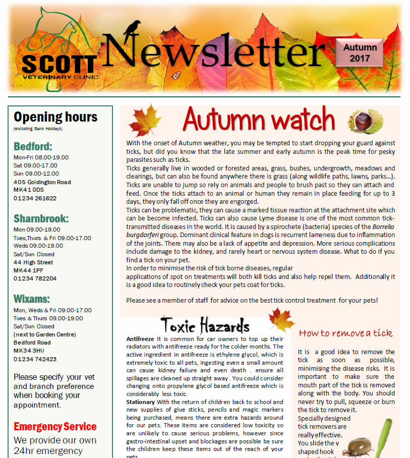 Autumn newsletter 2017 Scott Vets Bedford
