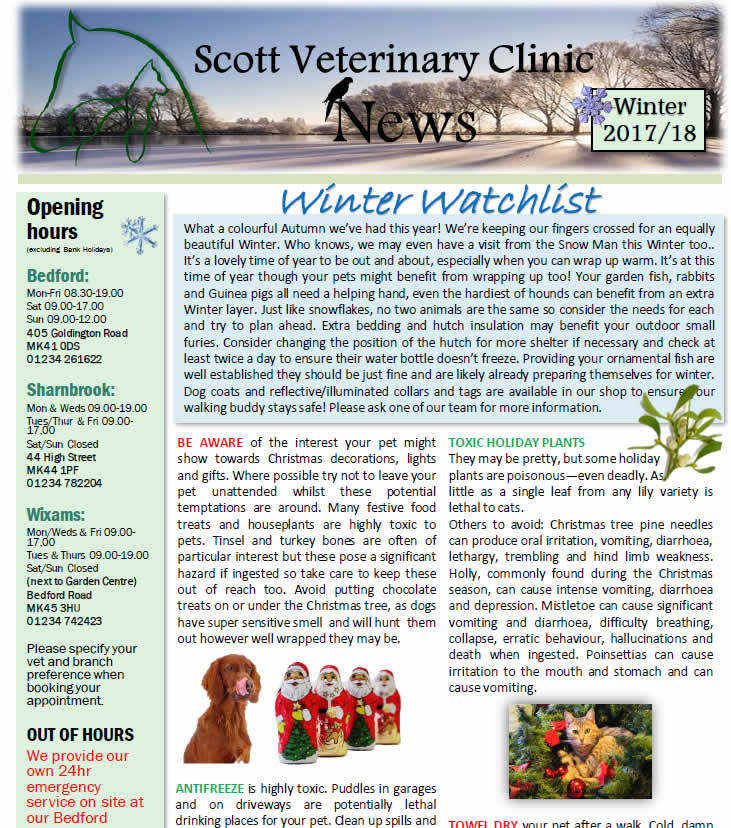 Winter newsletter Scott Vets
