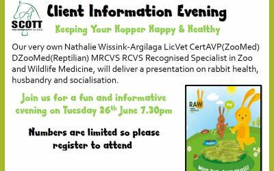 Rabbit Awareness Week in June
