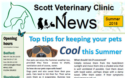 Our latest Summer Newsletter