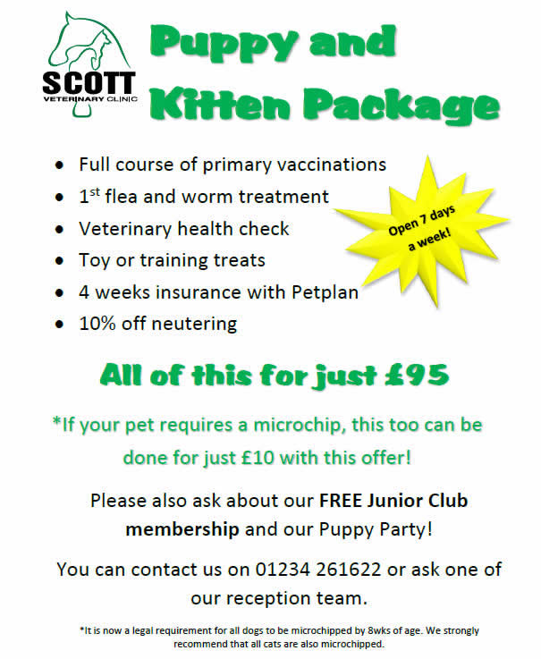 Puppy and kitten package Scott Vets