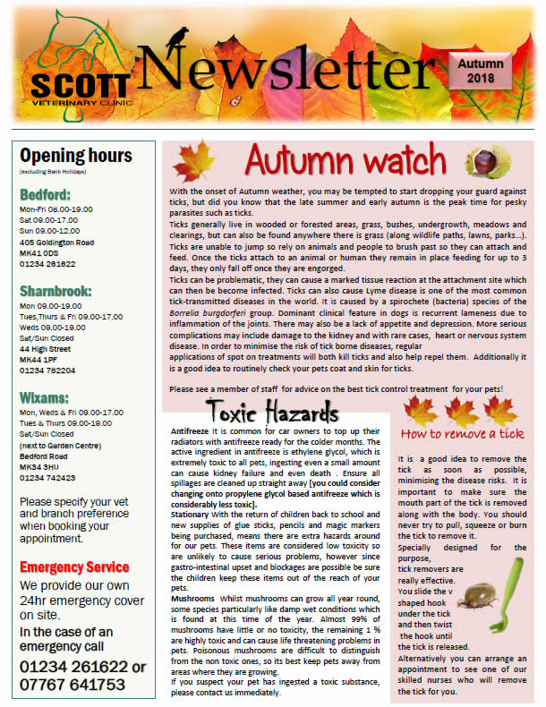 autumn newsletter scott vets