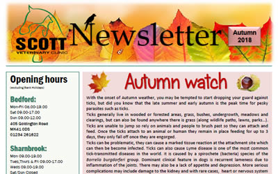Our latest Autumn Newsletter