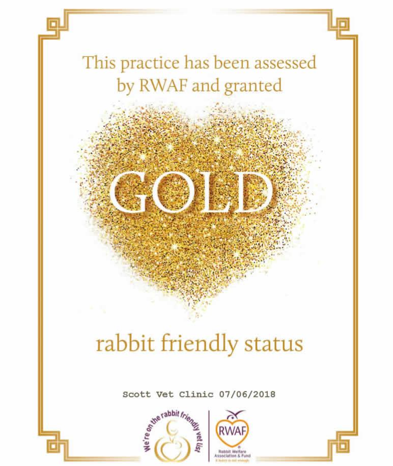 rabbit gold status at Scott Vets