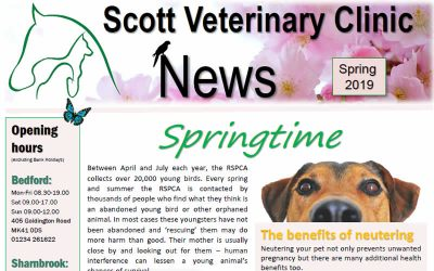 Our Latest Spring Newsletter